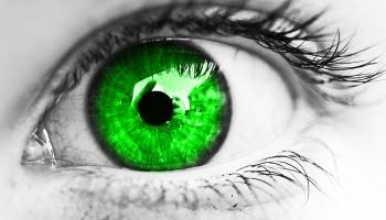 Glaukom – tihi ubojica vida