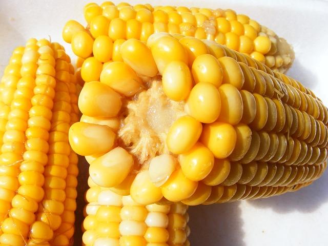 5.corn-87332_640