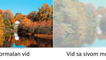 Normal vision vs. Cataract Vision